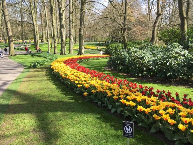 netherlands_Keukenhof_tulip03