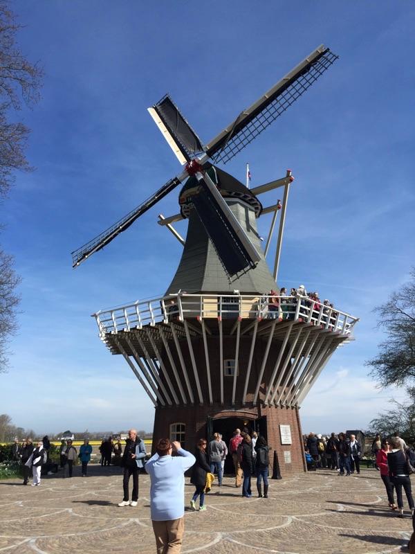 netherlands_Keukenhof_tulip08