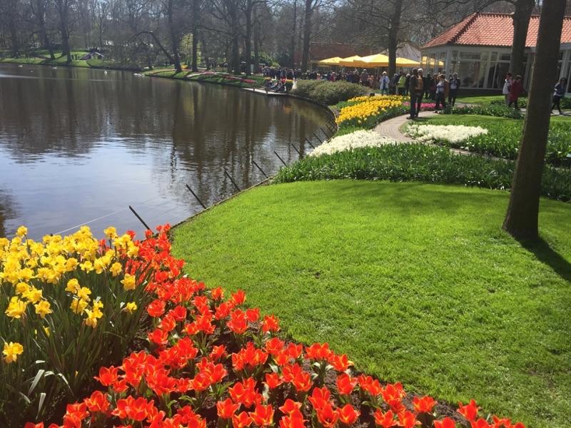 netherlands_Keukenhof_tulip13