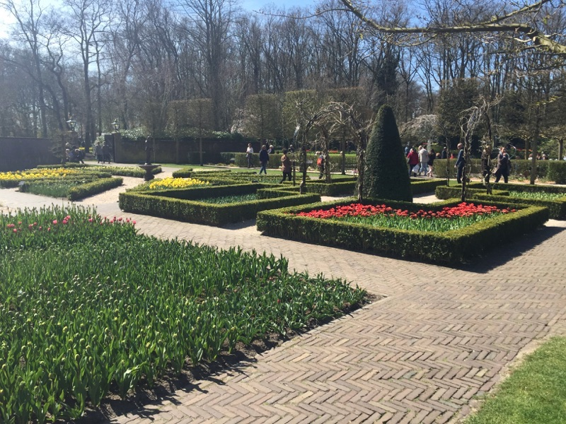 netherlands_Keukenhof_tulip16