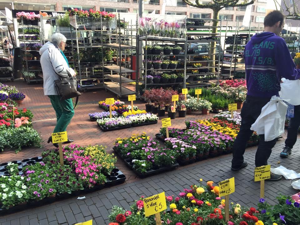 netherlands_market6
