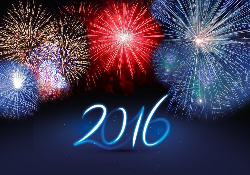 2016年どのように過ごしますか?